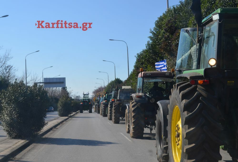 agrotes (39)