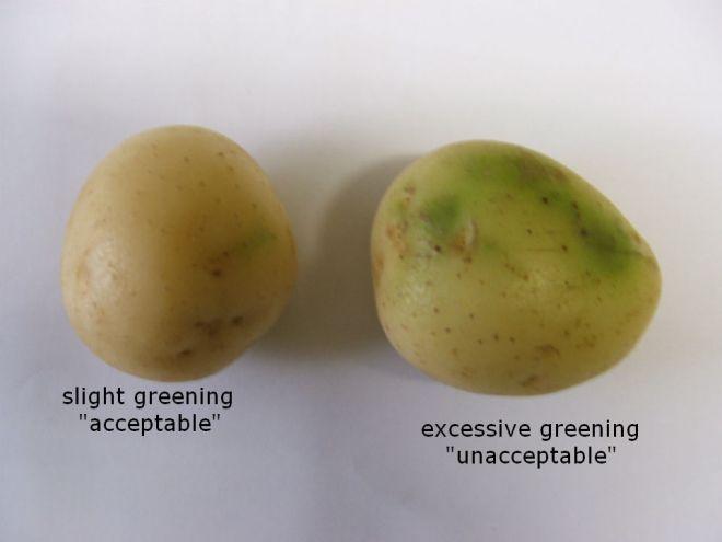 patates-akatalliles